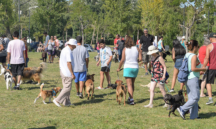 San Fernando inició un nuevo Taller Municipal de Adiestramiento de perros