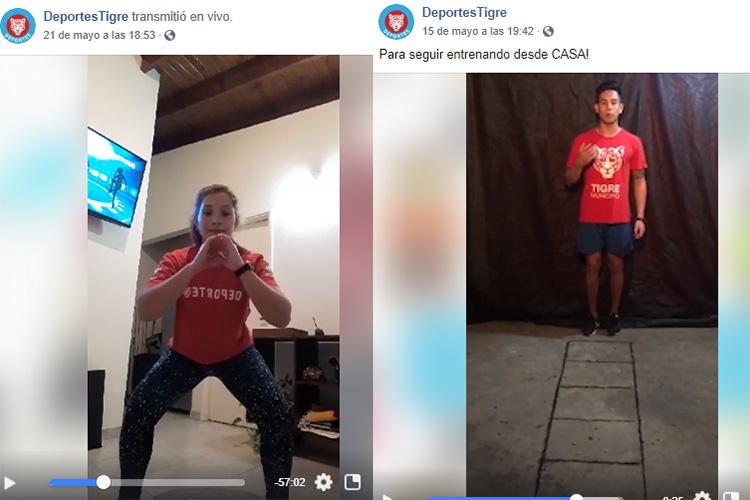 Tigre continúa con las clases de entrenamiento a través de redes sociales