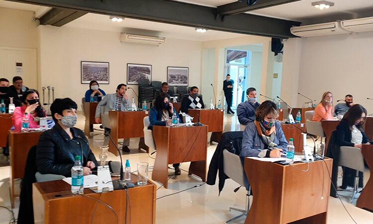 El HCD de San Fernando aprobó por unanimidad un proyecto para avanzar con la conectividad en el Delta