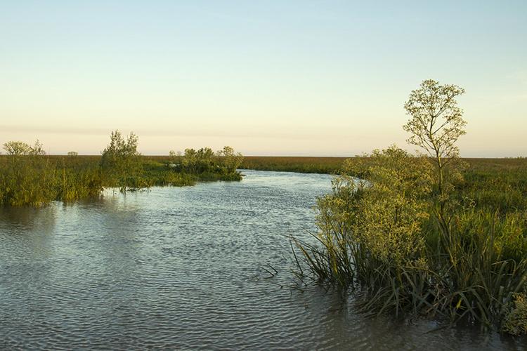 San Isidro lanzó un concurso para elegir nombre a sus tres Islas del Delta